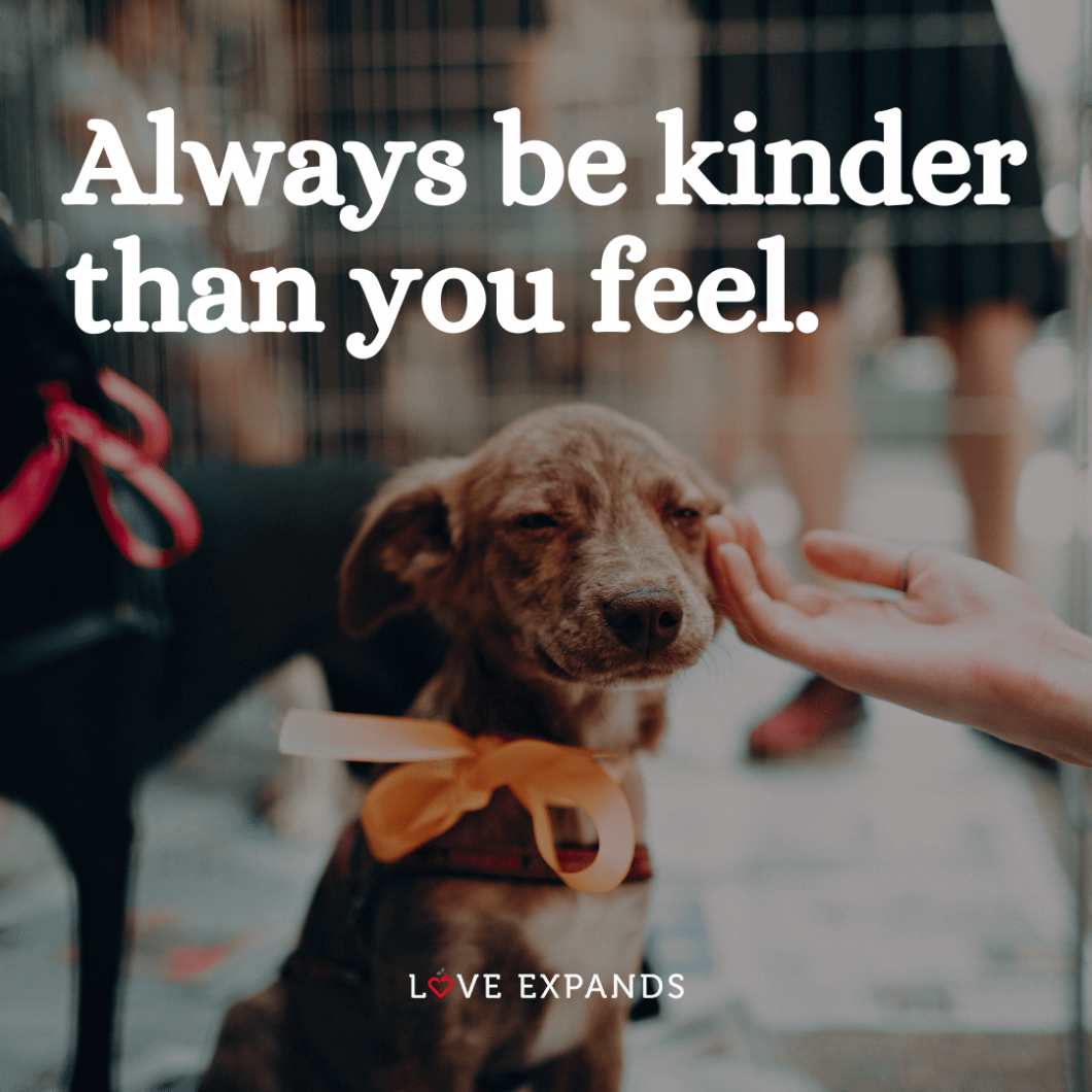 "Compassion and kindness picture quote: ""Always be kinder than you feel."""