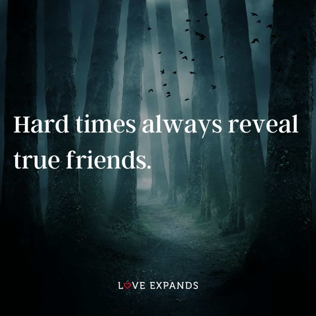 "Friendship picture quote: ""Hard times always reveal true friends."""