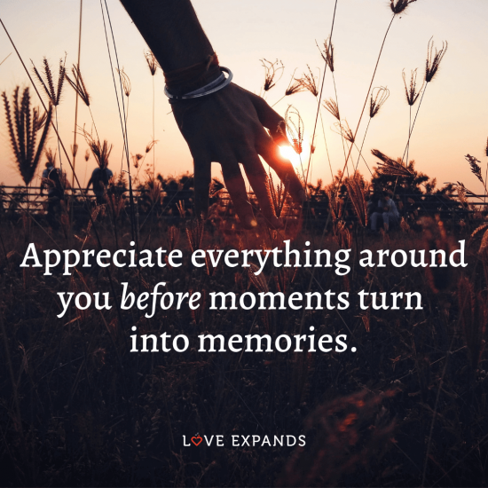 """Gratitude, life and being present picture quote: """"Appreciate everything around you before moments turn into memories."""""""