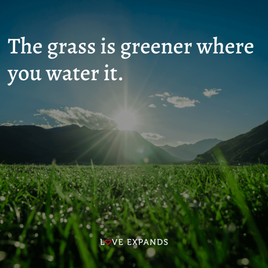"""Life and inspirational picture quote: """"The grass is greener where you water it."""""""