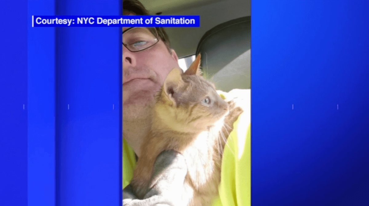 NYC Sanitation Workers Rescue Kitten from Trash Compactor