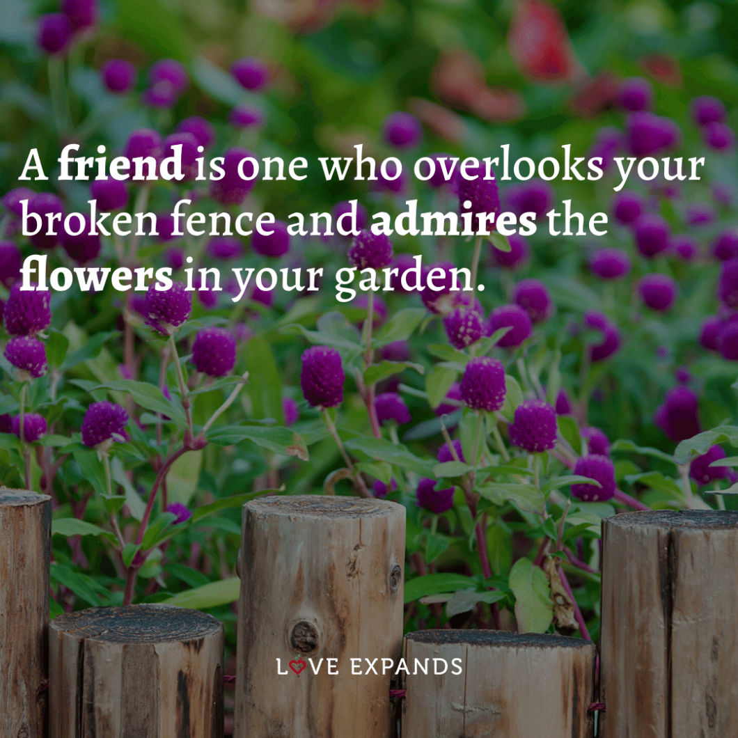 """Friendship picture quote: """"A friend is one who overlooks your broken fence and admires the flowers in your garden."""""""