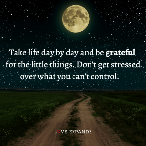 """Life and gratitude picture quote: """"Take life day by day and be grateful for the little things. Don't get stressed over what you can't control."""""""