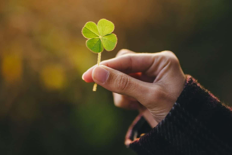 holding a lucky four leaf clover