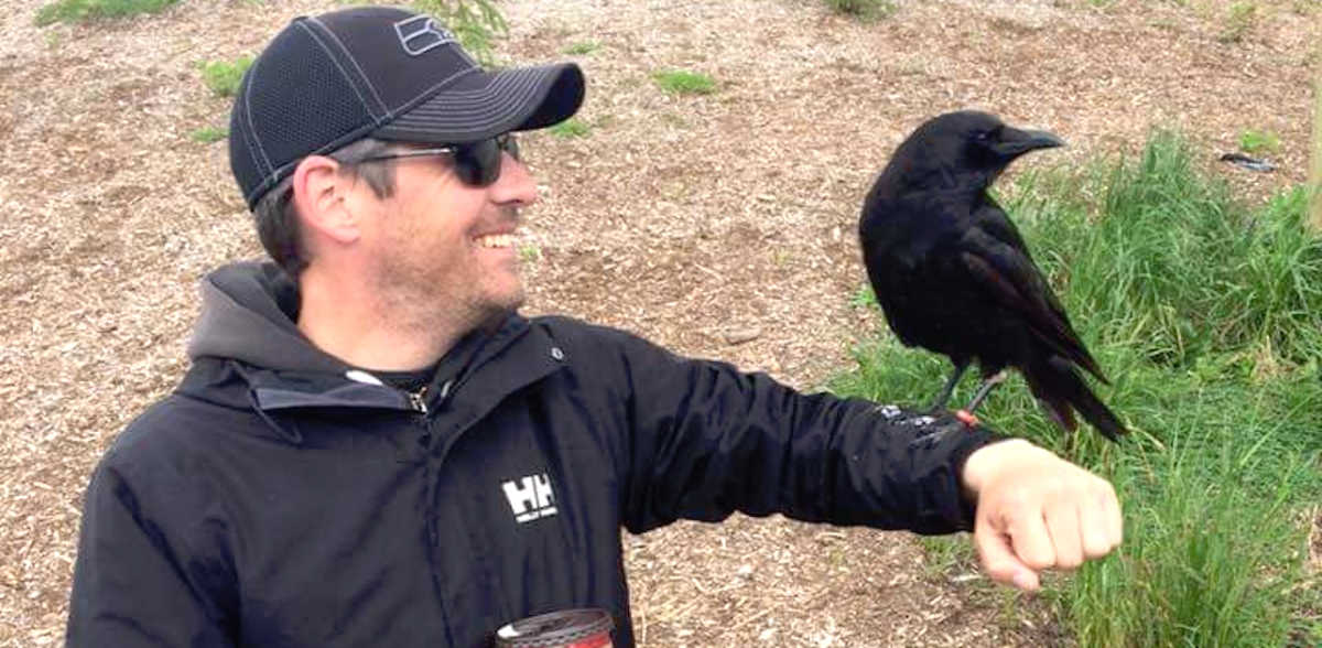 Crows often bring people familiar presents