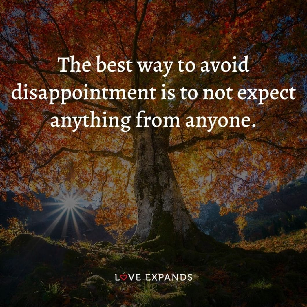 """Life, happiness and expectations picture quote: """"The best way to avoid disappointment is to not expect anything from anyone."""""""