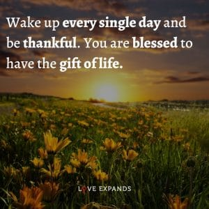 """Life and gratitude picture quote: """"Wake up every single day and be thankful. You are blessed to have the gift of life."""""""