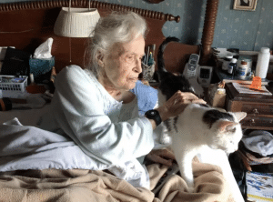 A senior woman in bed with her newly adopted senior cat