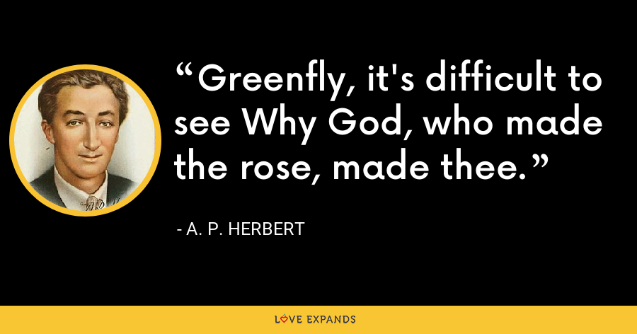 Greenfly, it's difficult to see Why God, who made the rose, made thee. - A. P. Herbert