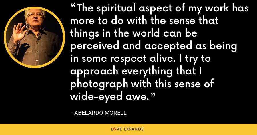 The spiritual aspect of my work has more to do with the sense that things in the world can be perceived and accepted as being in some respect alive. I try to approach everything that I photograph with this sense of wide-eyed awe. - Abelardo Morell