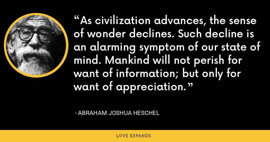 As civilization advances, the sense of wonder declines. Such decline is an alarming symptom of our state of mind. Mankind will not perish for want of information; but only for want of appreciation. - Abraham Joshua Heschel