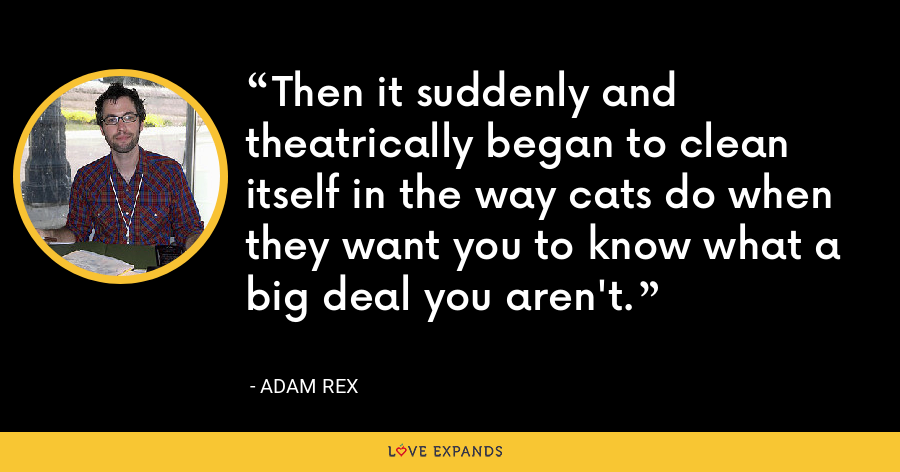 Then it suddenly and theatrically began to clean itself in the way cats do when they want you to know what a big deal you aren't. - Adam Rex