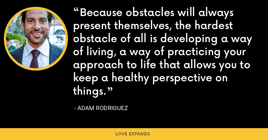 Because obstacles will always present themselves, the hardest obstacle of all is developing a way of living, a way of practicing your approach to life that allows you to keep a healthy perspective on things. - Adam Rodriguez