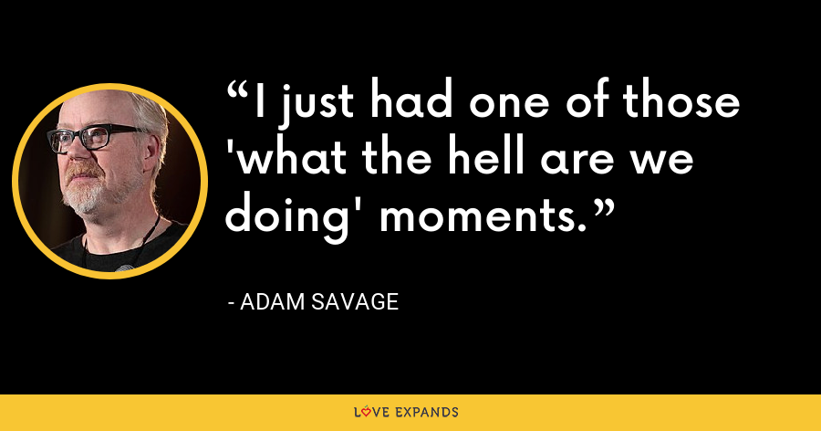 I just had one of those 'what the hell are we doing' moments. - Adam Savage