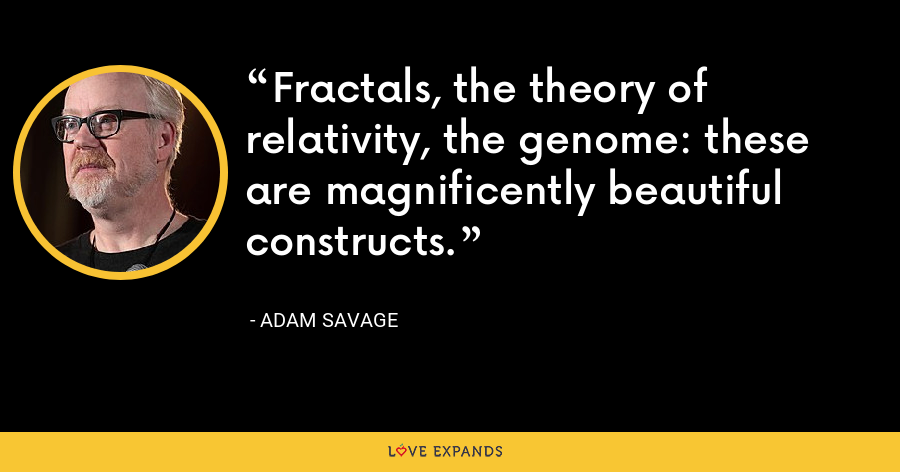 Fractals, the theory of relativity, the genome: these are magnificently beautiful constructs. - Adam Savage