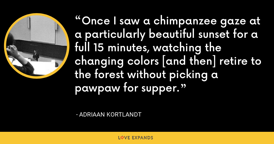 Once I saw a chimpanzee gaze at a particularly beautiful sunset for a full 15 minutes, watching the changing colors [and then] retire to the forest without picking a pawpaw for supper. - Adriaan Kortlandt