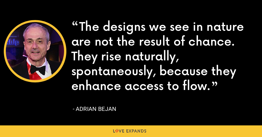 The designs we see in nature are not the result of chance. They rise naturally, spontaneously, because they enhance access to flow. - Adrian Bejan