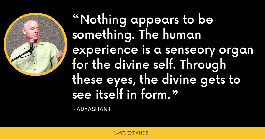 Nothing appears to be something. The human experience is a senseory organ for the divine self. Through these eyes, the divine gets to see itself in form. - Adyashanti