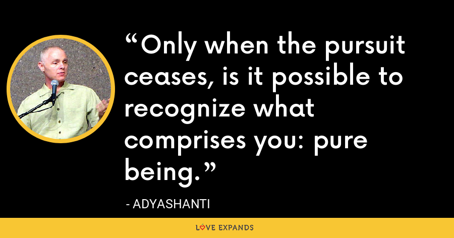Only when the pursuit ceases, is it possible to recognize what comprises you: pure being. - Adyashanti