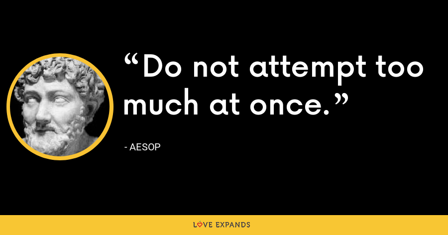 Do not attempt too much at once. - Aesop