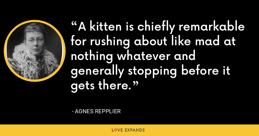 A kitten is chiefly remarkable for rushing about like mad at nothing whatever and generally stopping before it gets there. - Agnes Repplier