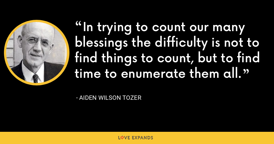 In trying to count our many blessings the difficulty is not to find things to count, but to find time to enumerate them all. - Aiden Wilson Tozer