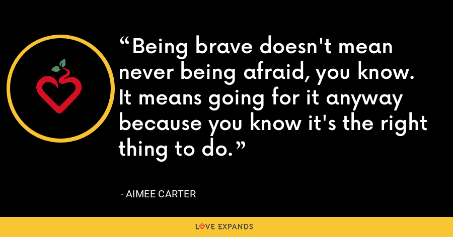 Being brave doesn't mean never being afraid, you know. It means going for it anyway because you know it's the right thing to do. - Aimee Carter
