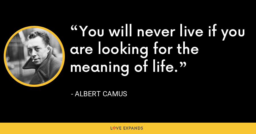 You will never live if you are looking for the meaning of life. - Albert Camus