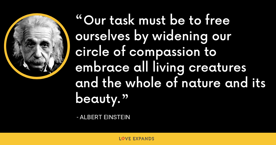Our task must be to free ourselves by widening our circle of compassion to embrace all living creatures and the whole of nature and its beauty. - Albert Einstein