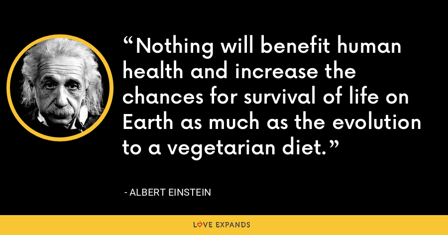 Nothing will benefit human health and increase the chances for survival of life on Earth as much as the evolution to a vegetarian diet. - Albert Einstein