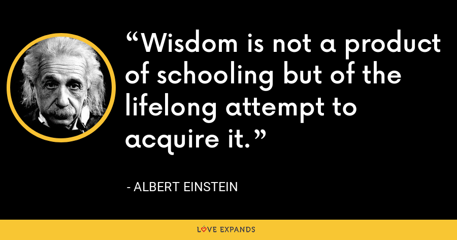Wisdom is not a product of schooling but of the lifelong attempt to acquire it. - Albert Einstein