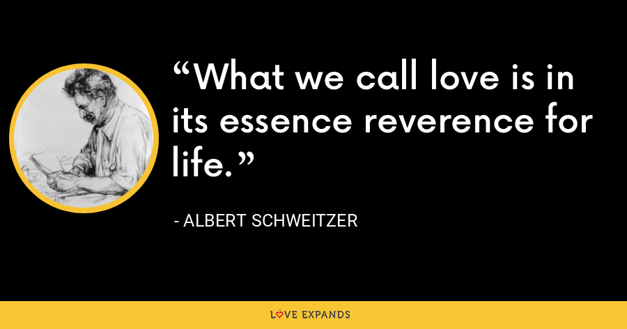 What we call love is in its essence reverence for life. - Albert Schweitzer
