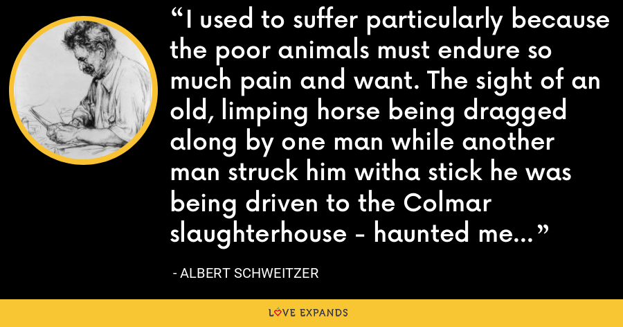 I used to suffer particularly because the poor animals must endure so much pain and want. The sight of an old, limping horse being dragged along by one man while another man struck him witha stick he was being driven to the Colmar slaughterhouse - haunted me for weeks. - Albert Schweitzer