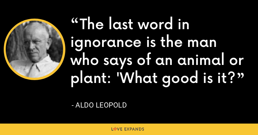 The last word in ignorance is the man who says of an animal or plant: 'What good is it? - Aldo Leopold
