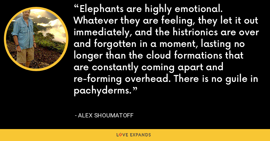 Elephants are highly emotional. Whatever they are feeling, they let it out immediately, and the histrionics are over and forgotten in a moment, lasting no longer than the cloud formations that are constantly coming apart and re-forming overhead. There is no guile in pachyderms. - Alex Shoumatoff