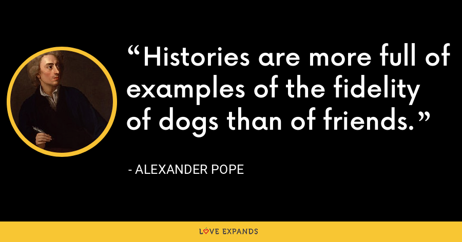 Histories are more full of examples of the fidelity of dogs than of friends. - Alexander Pope