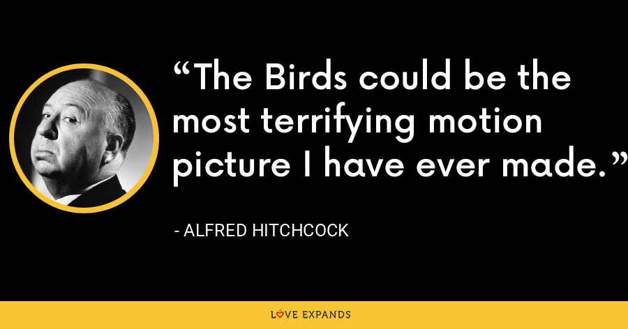 The Birds could be the most terrifying motion picture I have ever made. - Alfred Hitchcock