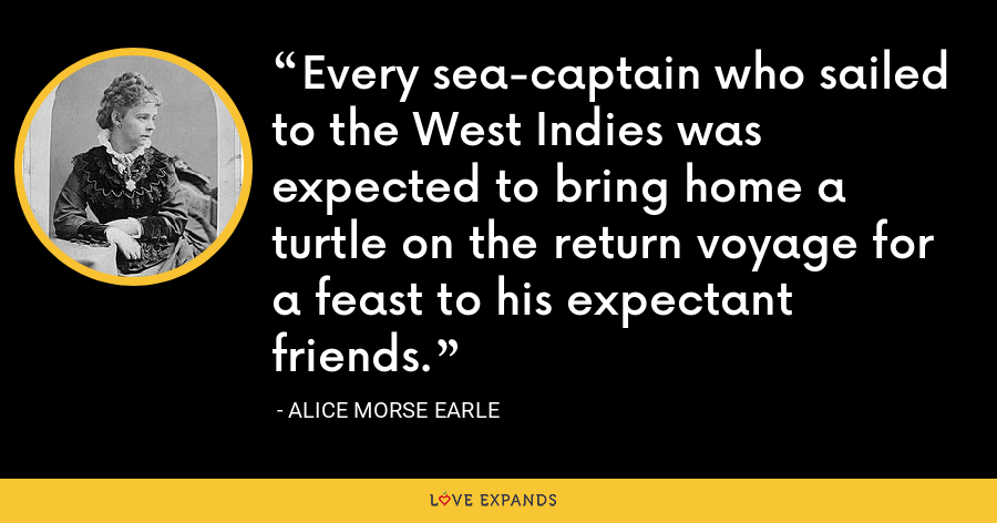 Every sea-captain who sailed to the West Indies was expected to bring home a turtle on the return voyage for a feast to his expectant friends. - Alice Morse Earle