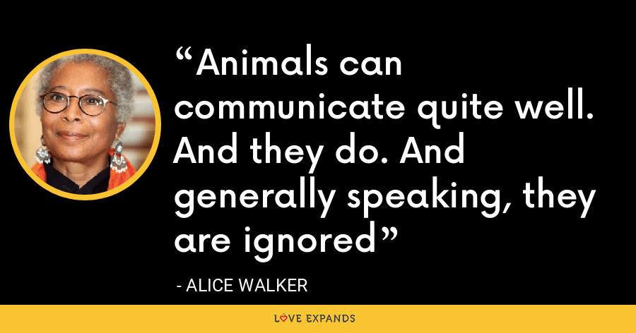 Animals can communicate quite well. And they do. And generally speaking, they are ignored - Alice Walker