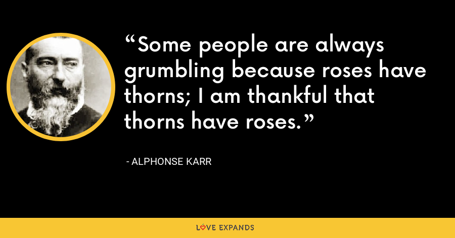 Some people are always grumbling because roses have thorns; I am thankful that thorns have roses. - Alphonse Karr