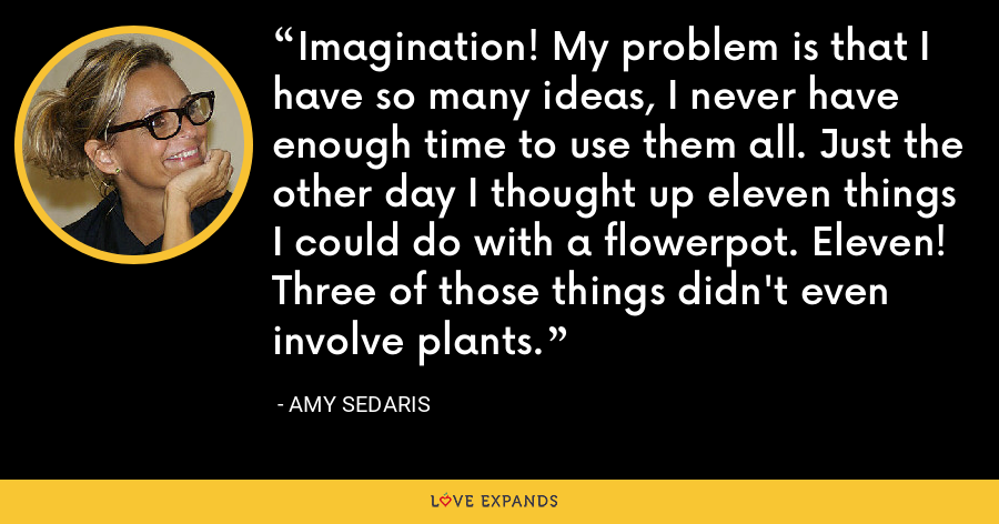 Imagination! My problem is that I have so many ideas, I never have enough time to use them all. Just the other day I thought up eleven things I could do with a flowerpot. Eleven! Three of those things didn't even involve plants. - Amy Sedaris