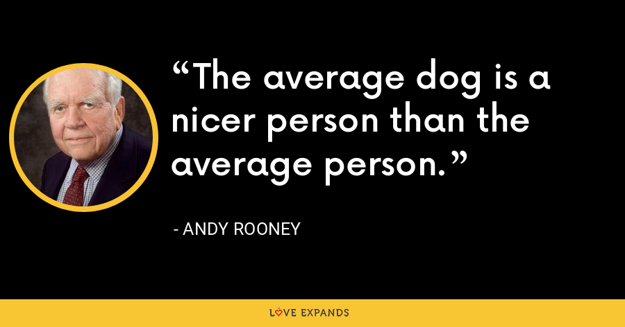 The average dog is a nicer person than the average person. - Andy Rooney