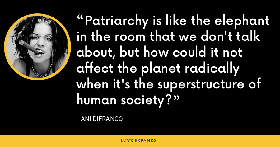Patriarchy is like the elephant in the room that we don't talk about, but how could it not affect the planet radically when it's the superstructure of human society? - Ani DiFranco