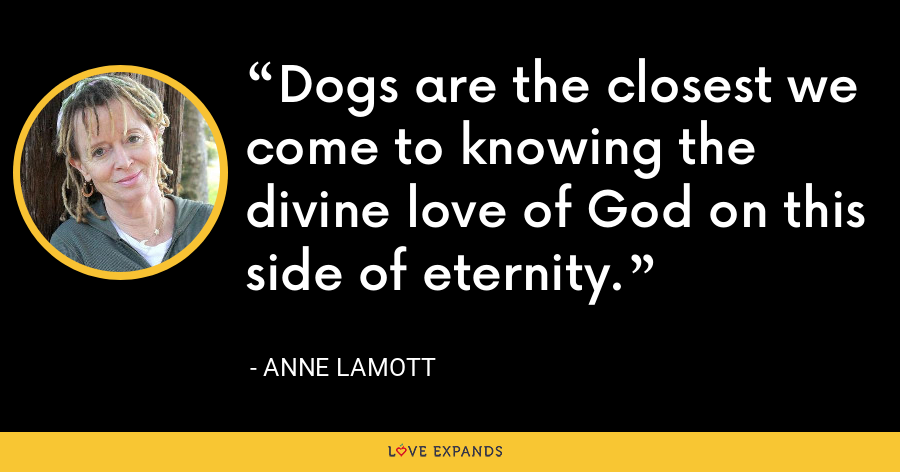 Dogs are the closest we come to knowing the divine love of God on this side of eternity. - Anne Lamott