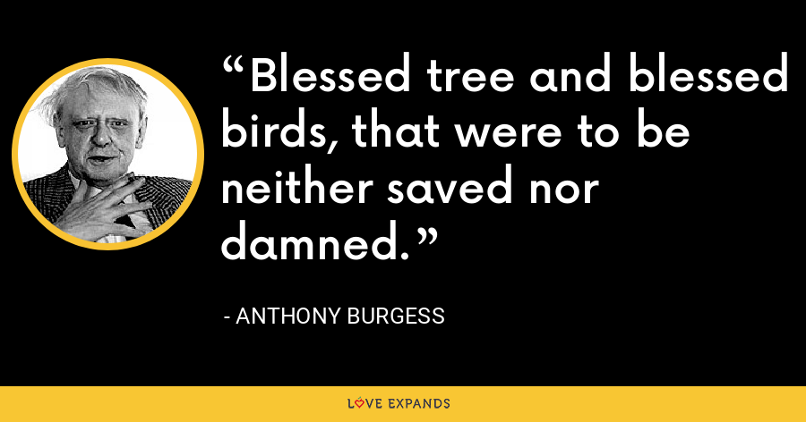 Blessed tree and blessed birds, that were to be neither saved nor damned. - Anthony Burgess