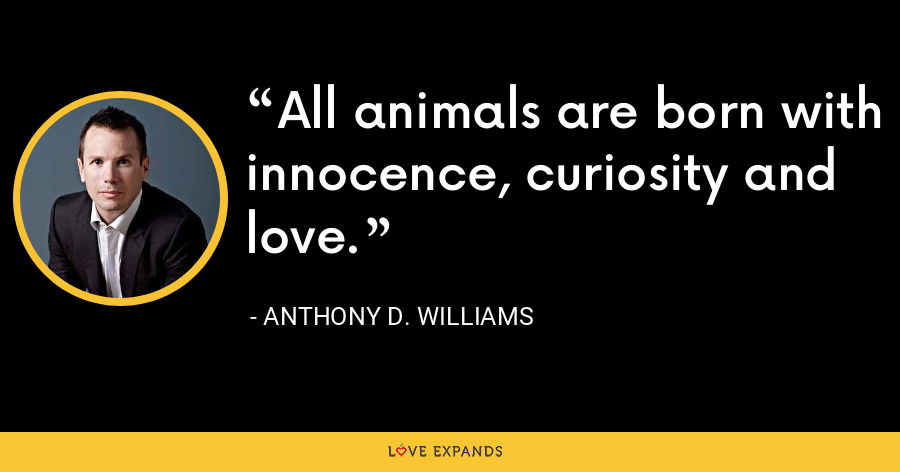 All animals are born with innocence, curiosity and love. - Anthony D. Williams