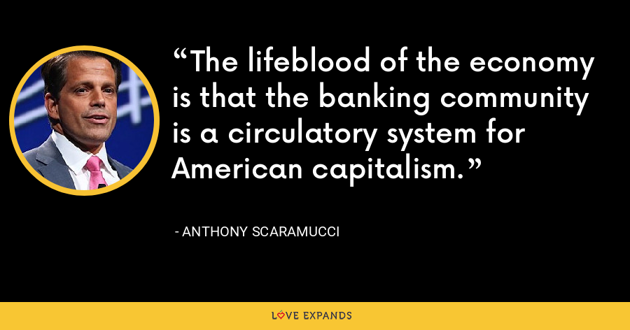 The lifeblood of the economy is that the banking community is a circulatory system for American capitalism. - Anthony Scaramucci