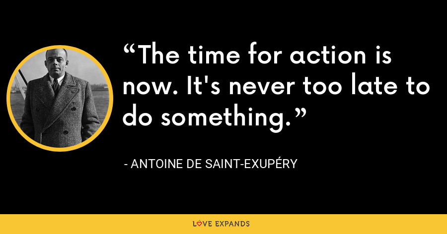 The time for action is now. It's never too late to do something. - Antoine de Saint-Exupéry