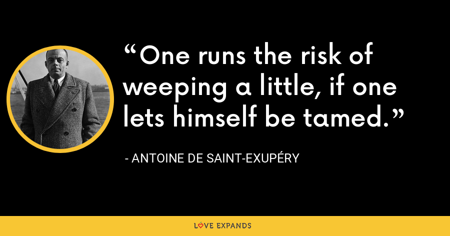 One runs the risk of weeping a little, if one lets himself be tamed. - Antoine de Saint-Exupéry