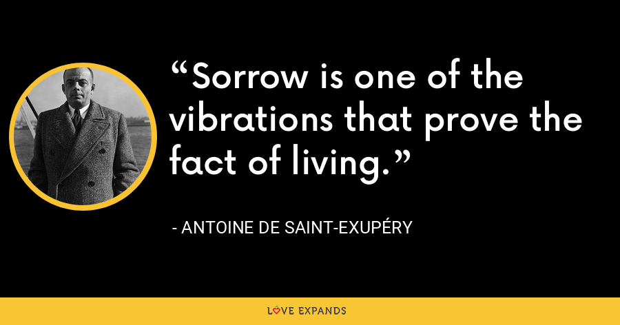 Sorrow is one of the vibrations that prove the fact of living. - Antoine de Saint-Exupéry